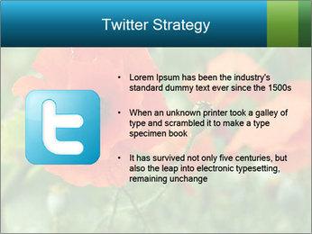 0000072419 PowerPoint Template - Slide 9