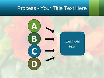 0000072419 PowerPoint Template - Slide 94
