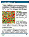 0000072419 Word Templates - Page 8