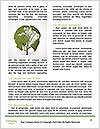 0000072420 Word Template - Page 4