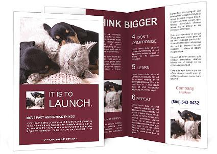 0000072421 Brochure Template