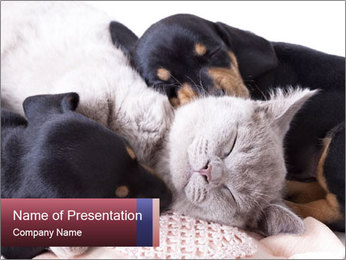 0000072421 PowerPoint Template