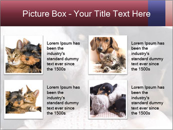 0000072421 PowerPoint Templates - Slide 14