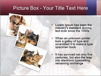0000072421 PowerPoint Templates - Slide 17