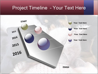 0000072421 PowerPoint Templates - Slide 26