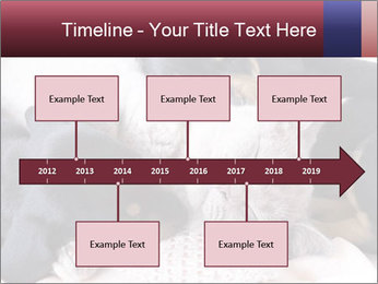0000072421 PowerPoint Templates - Slide 28