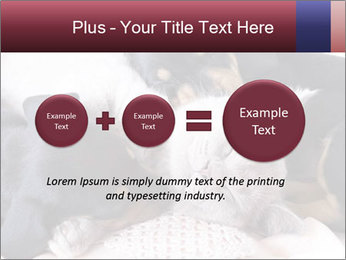 0000072421 PowerPoint Templates - Slide 75