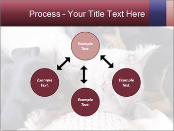 0000072421 PowerPoint Templates - Slide 91