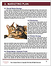 0000072421 Word Template - Page 8