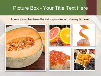 0000072424 PowerPoint Template - Slide 19