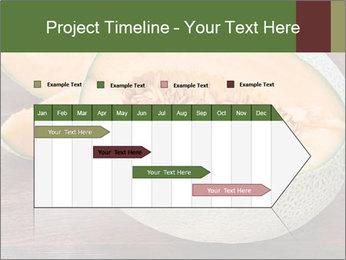 0000072424 PowerPoint Templates - Slide 25