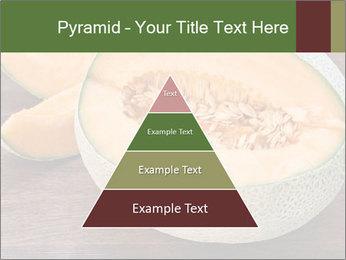 0000072424 PowerPoint Templates - Slide 30