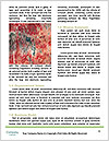 0000072432 Word Template - Page 4