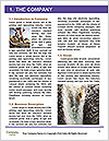 0000072440 Word Template - Page 3