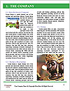 0000072453 Word Template - Page 3