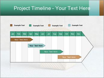 0000072455 PowerPoint Templates - Slide 25
