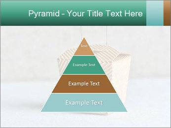 0000072455 PowerPoint Templates - Slide 30