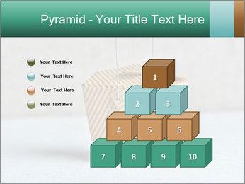 0000072455 PowerPoint Templates - Slide 31