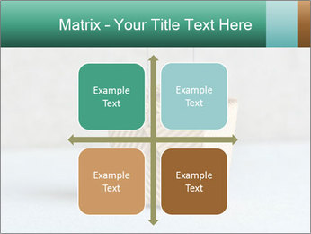 0000072455 PowerPoint Templates - Slide 37