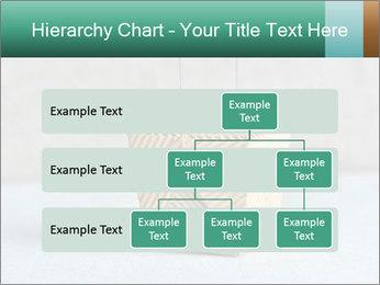 0000072455 PowerPoint Templates - Slide 67