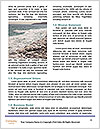 0000072461 Word Template - Page 4