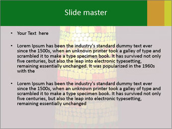 0000072465 PowerPoint Templates - Slide 2
