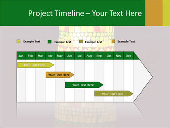 0000072465 PowerPoint Templates - Slide 25