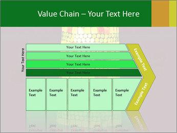 0000072465 PowerPoint Templates - Slide 27