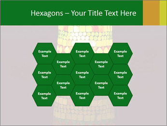 0000072465 PowerPoint Templates - Slide 44
