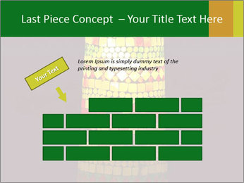 0000072465 PowerPoint Templates - Slide 46