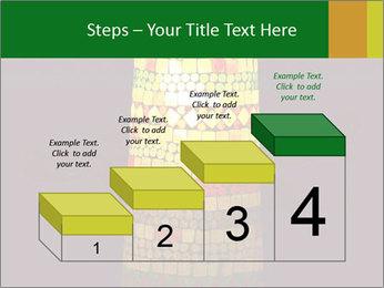 0000072465 PowerPoint Templates - Slide 64