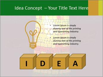 0000072465 PowerPoint Templates - Slide 80
