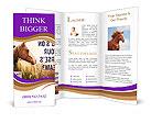 0000072471 Brochure Templates