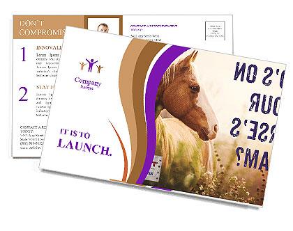 0000072471 Postcard Templates
