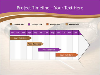 0000072482 PowerPoint Template - Slide 25