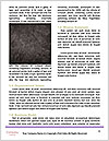 0000072484 Word Templates - Page 4
