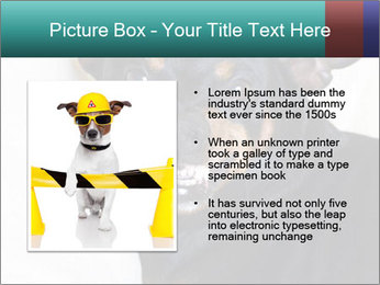 0000072488 PowerPoint Template - Slide 13