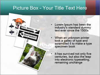 0000072488 PowerPoint Template - Slide 17