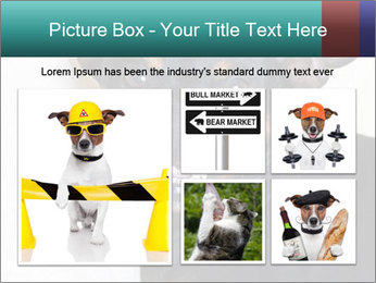 0000072488 PowerPoint Template - Slide 19