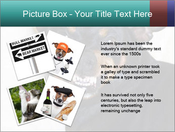 0000072488 PowerPoint Template - Slide 23