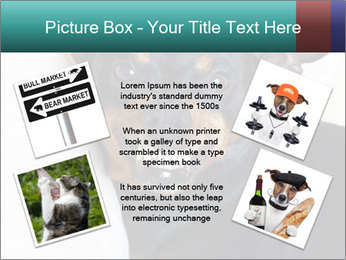 0000072488 PowerPoint Template - Slide 24