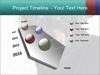 0000072488 PowerPoint Template - Slide 26