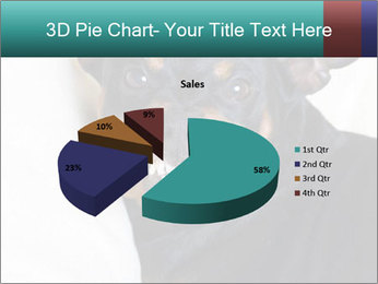 0000072488 PowerPoint Template - Slide 35