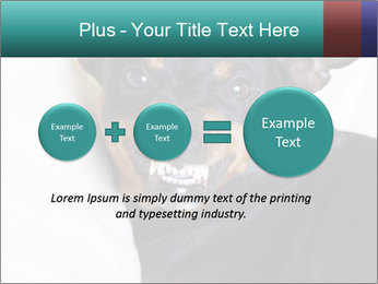 0000072488 PowerPoint Template - Slide 75