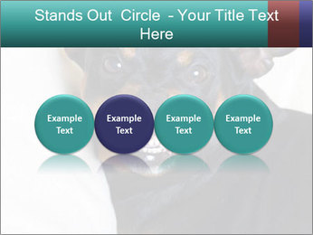 0000072488 PowerPoint Template - Slide 76