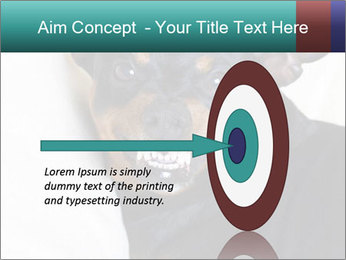 0000072488 PowerPoint Template - Slide 83