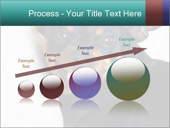 0000072488 PowerPoint Template - Slide 87