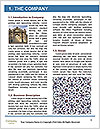0000072494 Word Template - Page 3