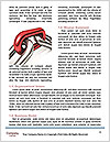 0000072499 Word Template - Page 4