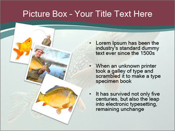 0000072516 PowerPoint Template - Slide 17